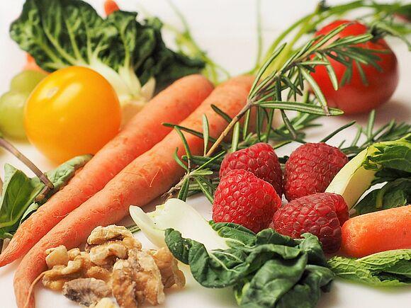 Inhalt & Aufbau Modul Grundlagen Ernährung (I40-1)